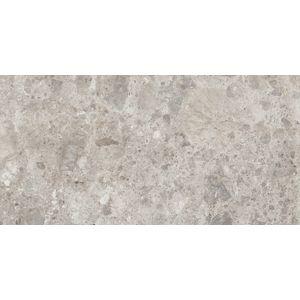 Dlažba Ragno Eterna mix gris 30x60 cm mat ETR8K4